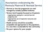 assumptions underpinning the peninsula maternal neonatal service