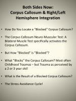 both sides now corpus callosum right left hemisphere integration