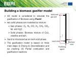 building a biomass gasifier model