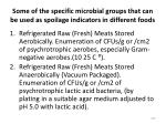 some of the specific microbial groups that can be used as spoilage indicators in different foods
