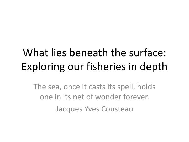 what lies beneath the surface exploring our fisheries in depth n.