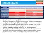 indonesia 22