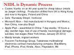 nidl is dynamic process