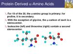 protein derived amino acids3