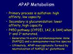 apap metabolism1