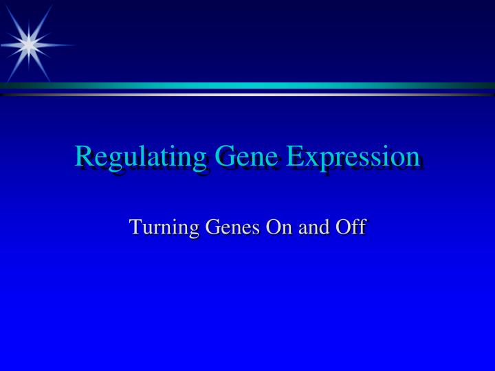 regulating gene expression n.