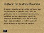 historia de su domesticaci n