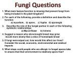 fungi questions