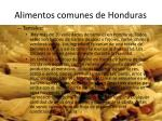 alimentos comunes de honduras5