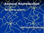 asexual reproduction1