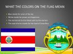 what the colors on the flag mean