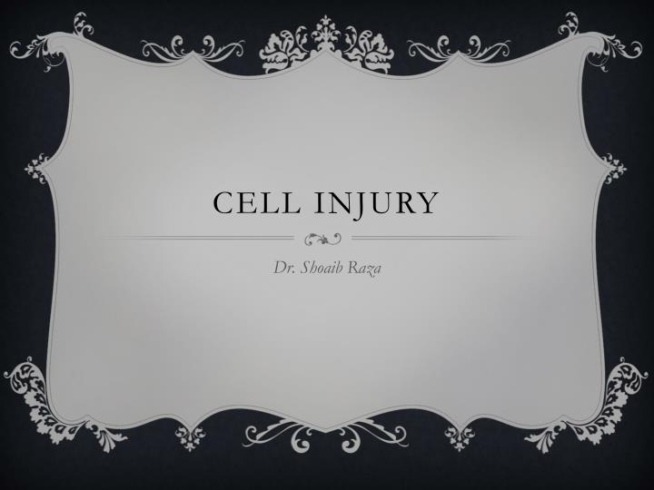 cell injury n.