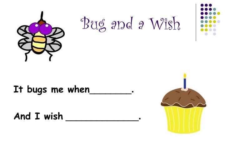 Bug and a Wish