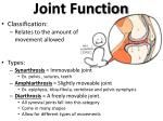joint function