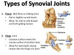 types of synovial joints1