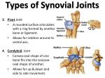 types of synovial joints2