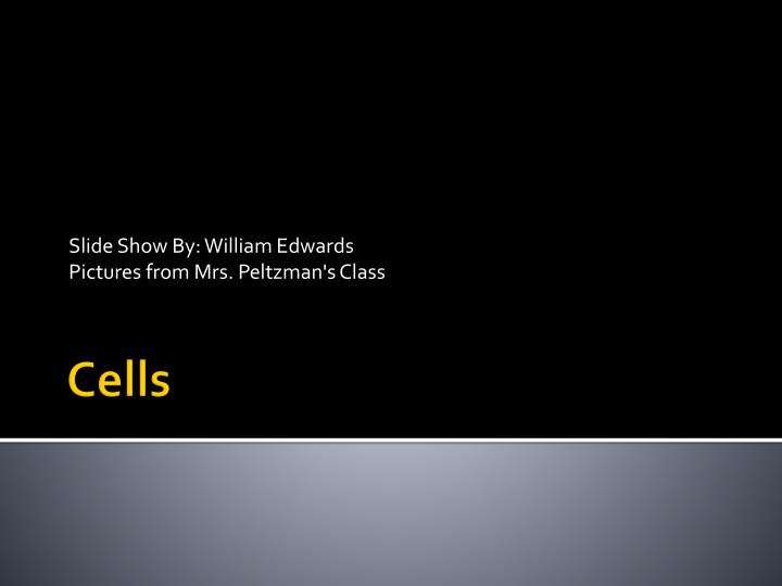 slide show by william edwards pictures from mrs peltzman s class n.