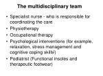 the multidisciplinary team