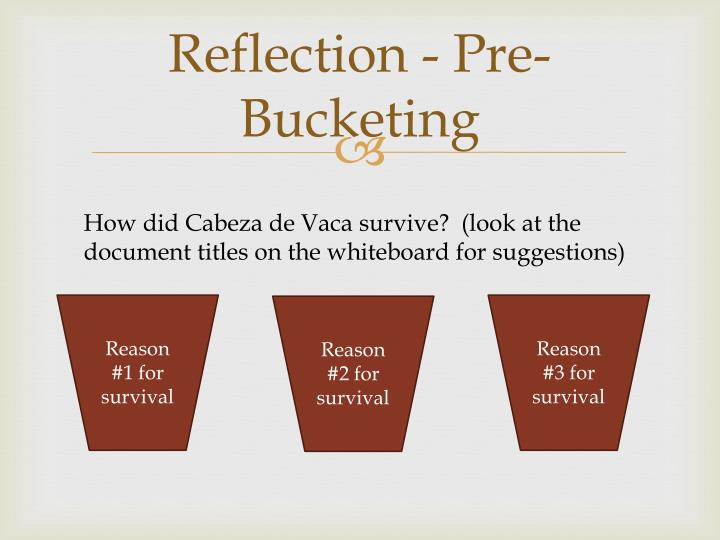 how did cabeza de vaca survive
