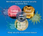 new dimensions of regional security in central asia