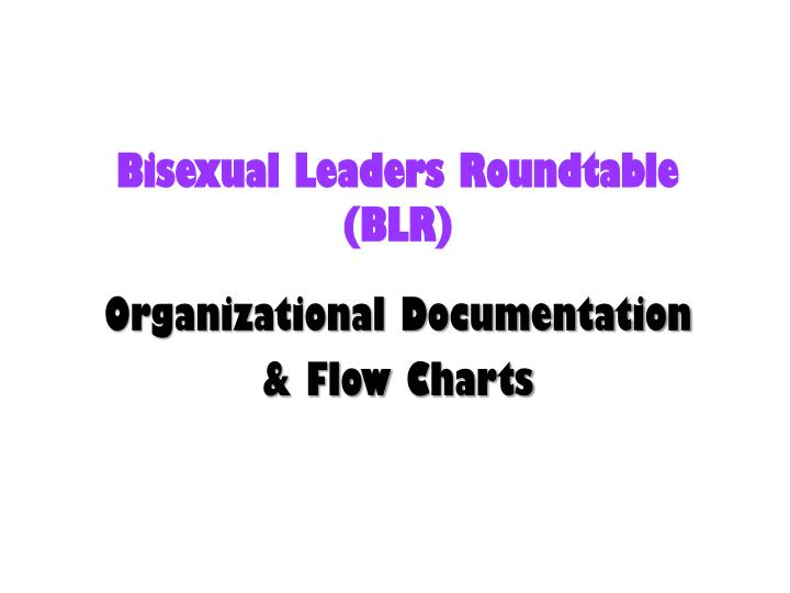 bisexual leaders roundtable blr n.