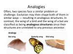 analogies1