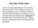 the tale of the limb
