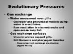evolutionary pressures2