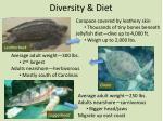 diversity diet