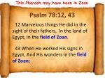 psalm 78 12 43