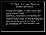 wellhead recovery system basic operation