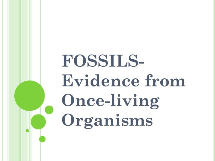 fossils evidence from once living organisms n.