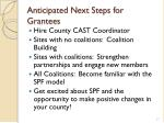 anticipated next steps for grantees