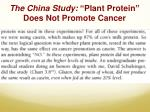 the china study plant protein does not promote cancer