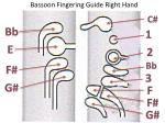 bassoon fingering guide right hand