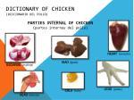 dictionary of chicken diccionario del pollo3