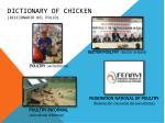 dictionary of chicken diccionario del pollo4