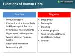 functions of human flora