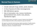 normal flora in humans