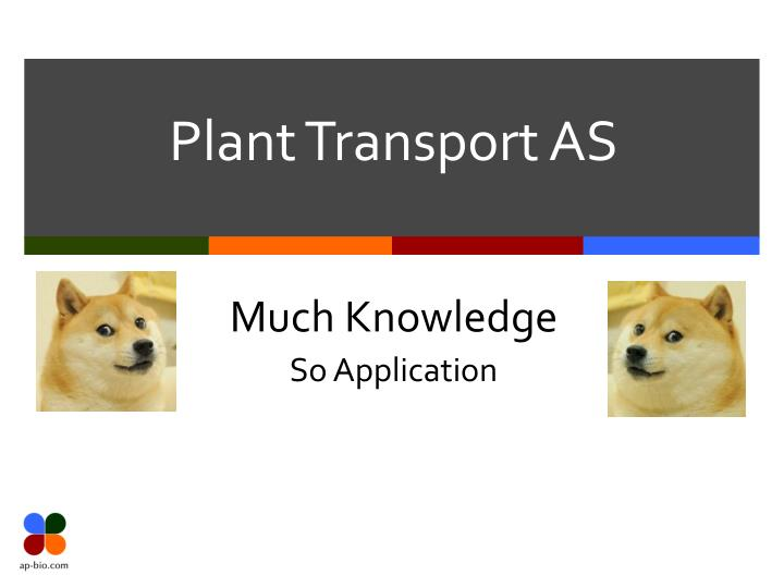 plant transport as n.