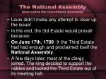 the national assembly also called the constituent assembly