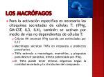 los macr fagos2