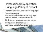 professional co operation language policy at school