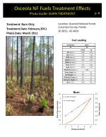 osceola nf fuels treatment effects photo guide burn treatment
