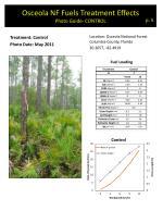 osceola nf fuels treatment effects photo guide control