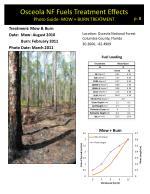 osceola nf fuels treatment effects photo guide mow burn treatment