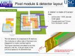 pixel module detector layout