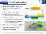 velo pixel module
