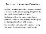 focus on the senses exercises