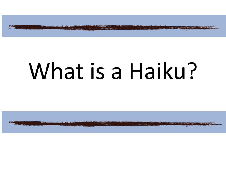 what is a haiku n.